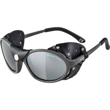 Γυαλιά ορειβασίας ALPINA SIBIRIA A8316.3.27