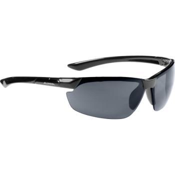 Γυαλιά ηλίου ALPINA DRAFF A8558.3.31