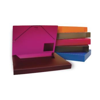 Κουτί λάστιχο TYPOTRUST Α4 με ράχη 5cm 25Χ35 6 χρώματα
